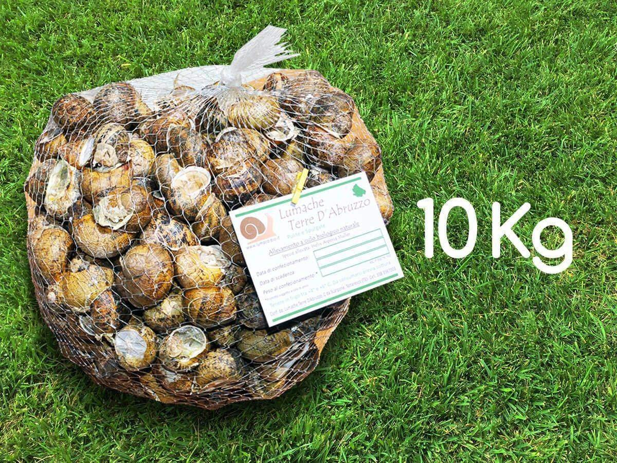 lumache su erba 10Kg